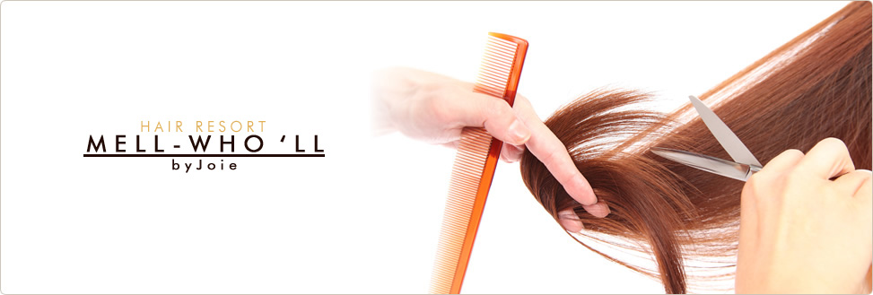 HAIR RESORT MELL-WHO'LL